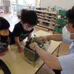 教頭先生がオオムラサキの幼虫を見せてくれたよ
